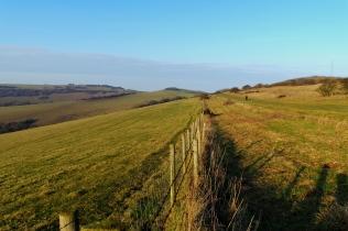 Fence Views - January 2017 - ©NinaMcIntyre